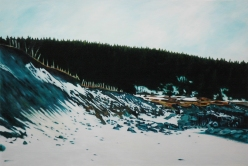"""Middle Cove Beach (winter)"""